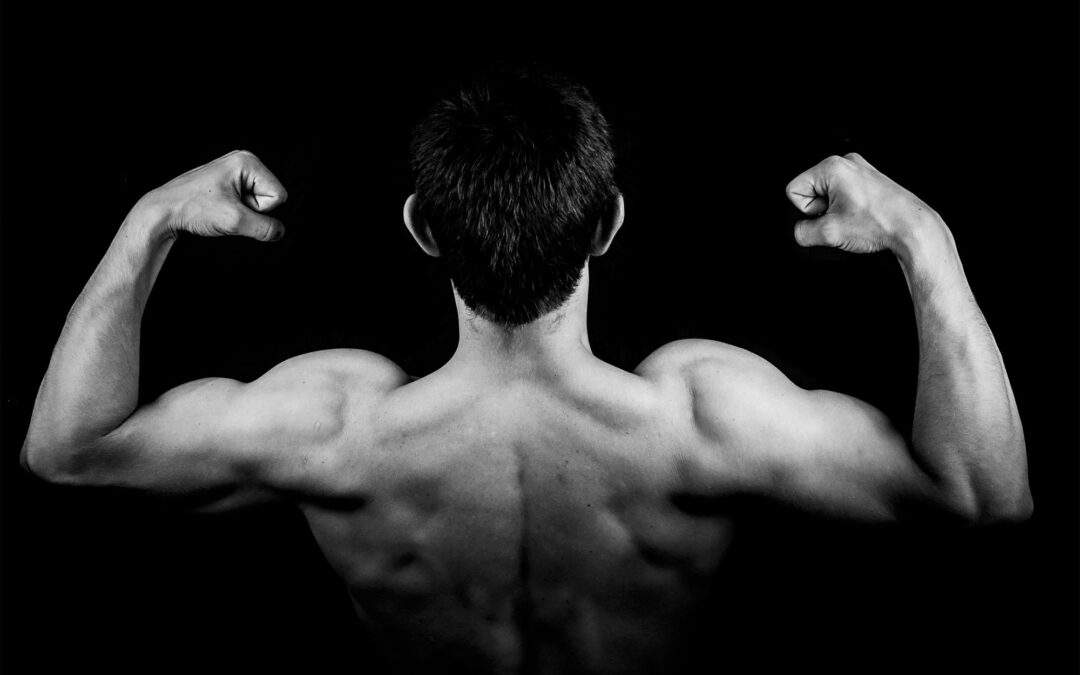 Building Muscle Takes More Than Just Exercise