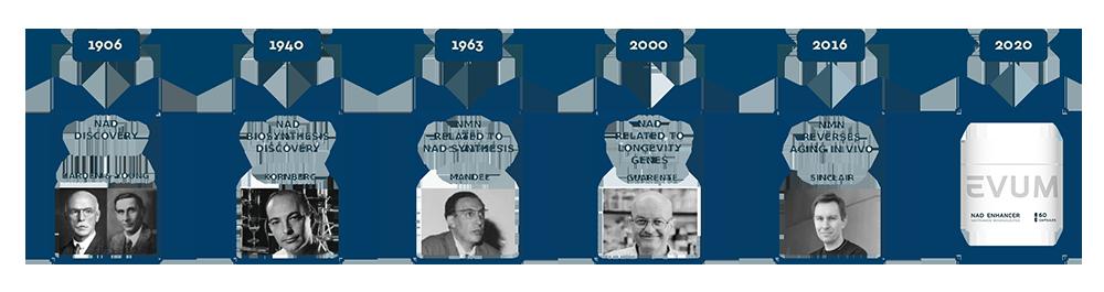 Timeline Evum